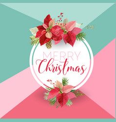 Christmas winter poinsettia flower banner graphic vector