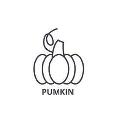 pumpkin line icon outline sign linear symbol vector image