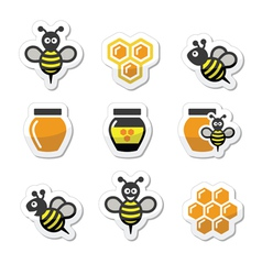 Bee and honey icons set vector image