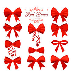 cartoon red bow set vector image