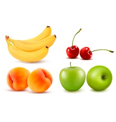 Group of fresh colorful fruit vector
