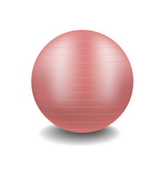 gym ball in pink design with shadow vector image