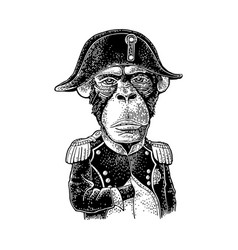 Monkey dressed in the french military uniform and vector