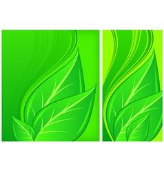 natural design leaf vector image