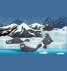 Scene with seals at arctic vector