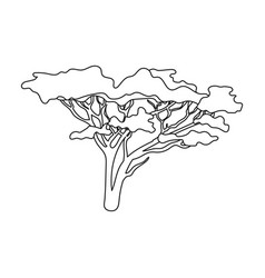 Tree in the savannahafrican safari single icon in vector