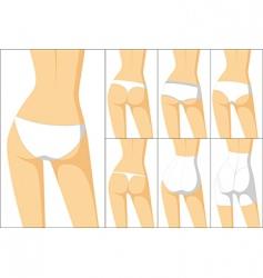 female panties vector image