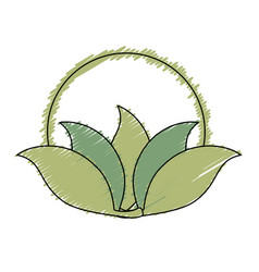 Frame with leafs plant decorative icon vector