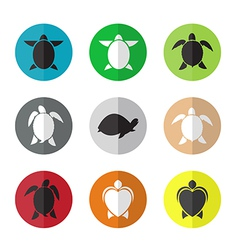 group of turtle in the circle vector image