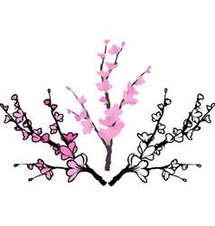Sakura three variants vector image