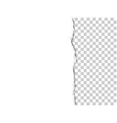 A piece white paper vector