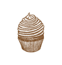 Chocolate cupcake on white background in hand vector