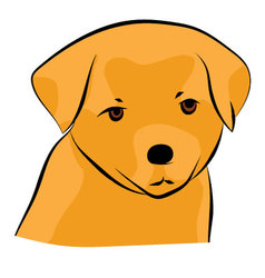 Golden Retriever Puppy vector