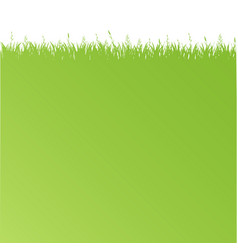 Green poster with green grass vector