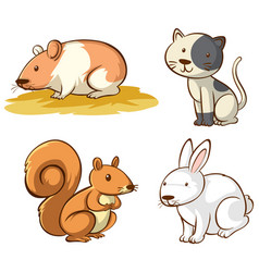 isolated picture cute animals vector image