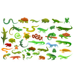 Reptiles amphibians icons set cartoon style vector