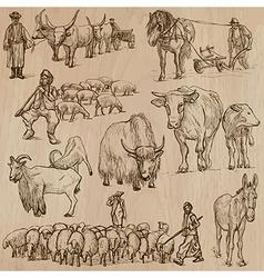 Farm animals Hand drawn pack vector image