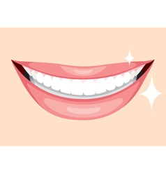Beautiful Mouth Smile And Teeth vector