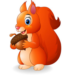 cartoon funny squirrel holding pine cone vector image