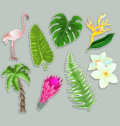 colorful stickers tropical plants flamingo set vector image