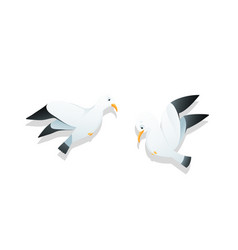 funny flying seagull or gull comic silly marine vector image