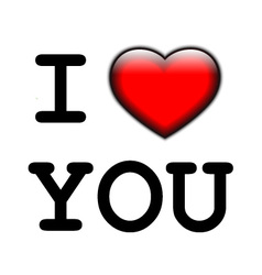 I love you message with a red heart vector image