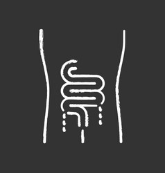 Ill intestines chalk icon sore human organ people vector