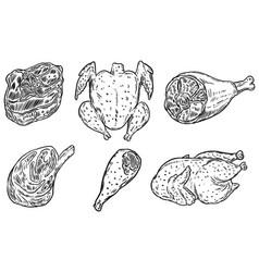 set hand drawn meat chicken meat steak design vector image