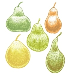 set of hand-drawn pears vector image