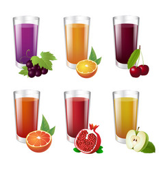 set of realistic glasses with tasty juice on white vector image
