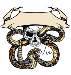 Skull and snake template with ribbon vector