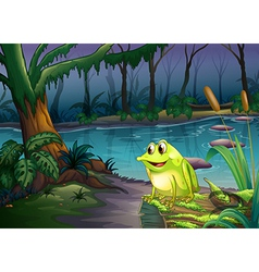 A frog above a trunk with algae vector image