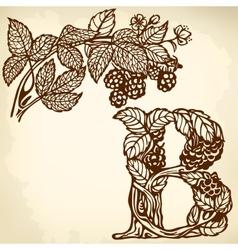 Blackberries on a branch brown B vector image