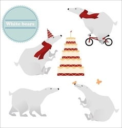 Four white polar bears isolated on background vector image
