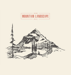 Mountain landscape lake spruces drawn vector