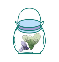 petals inside jar nature botanic vector image