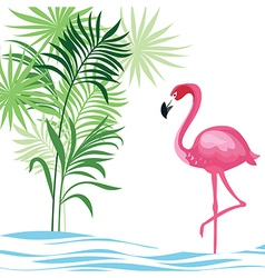 Tropical with flamingo vector image
