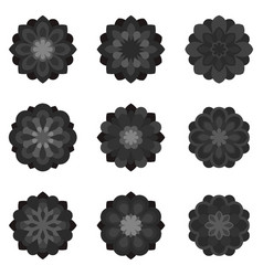 set of black flowers vector image