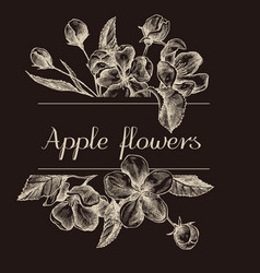 Hand drawn design with apple flowers isolated on vector
