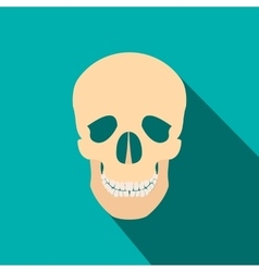 Human skull flat icon with shadow vector