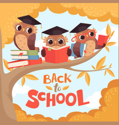 owl in branch back to school september autumn vector image