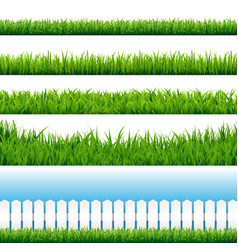 Realistic grass borders vector