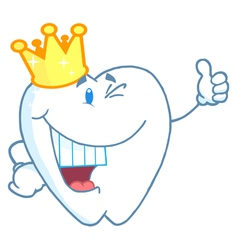 Tooth Character Wearing A Crown vector