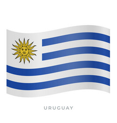 uruguay waving flag icon vector image
