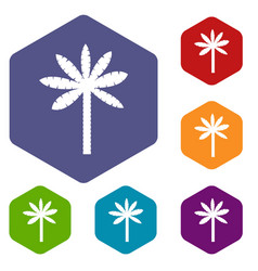 palm tree icons set hexagon vector image vector image