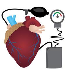 Blood pressure measuring vector