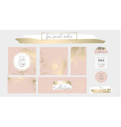 Elegant social media trendy chic gold pink blush vector