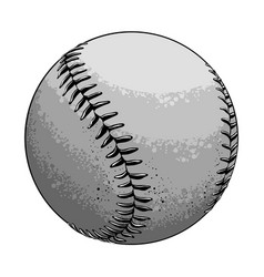 Hand drawn sketch baseball ball in black and white vector