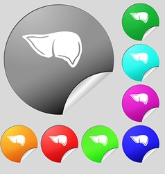 Liver icon sign Set of eight multi colored round vector image