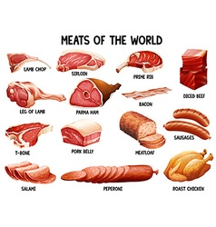 Meat of the world vector image